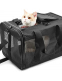 Forfait transport pour chats sur Créteil